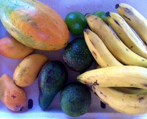 Obst für 2,80 €