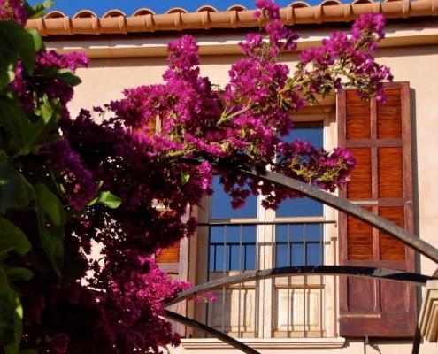 Finca Ariany Mallorca The Work